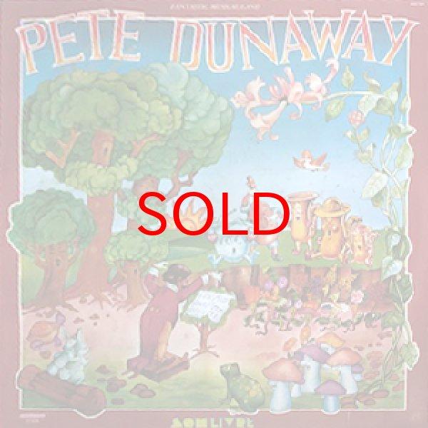 画像1: PETE DUNAWAY -  FANTASTIC MUSICAL LAND (1)